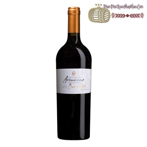 Rượu vang Hacienda Araucano Clos de Lolol Organic Wine