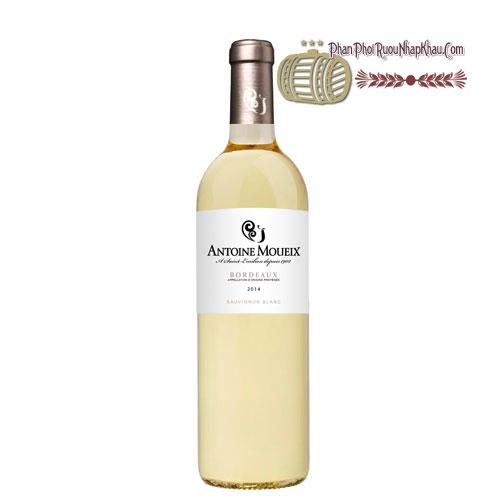 Rượu vang Bordeaux Antoine Moueix Sauvignon Blanc [PE] - phanphoiruounhapkhau.com