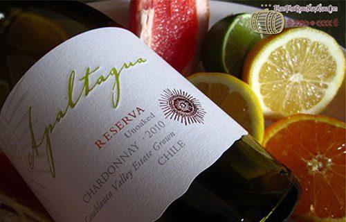 rượu vang chile apaltagua
