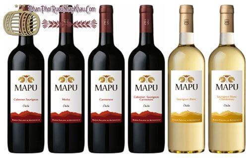 rượu vang chile mapu