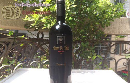 rượu vang amor de chile