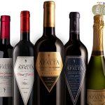 Rượu vang Chile Apalta