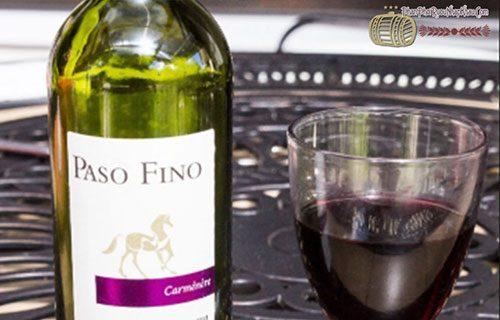 Rượu vang Chile Paso Fino