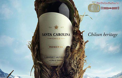 rượu vang chile santo carolina